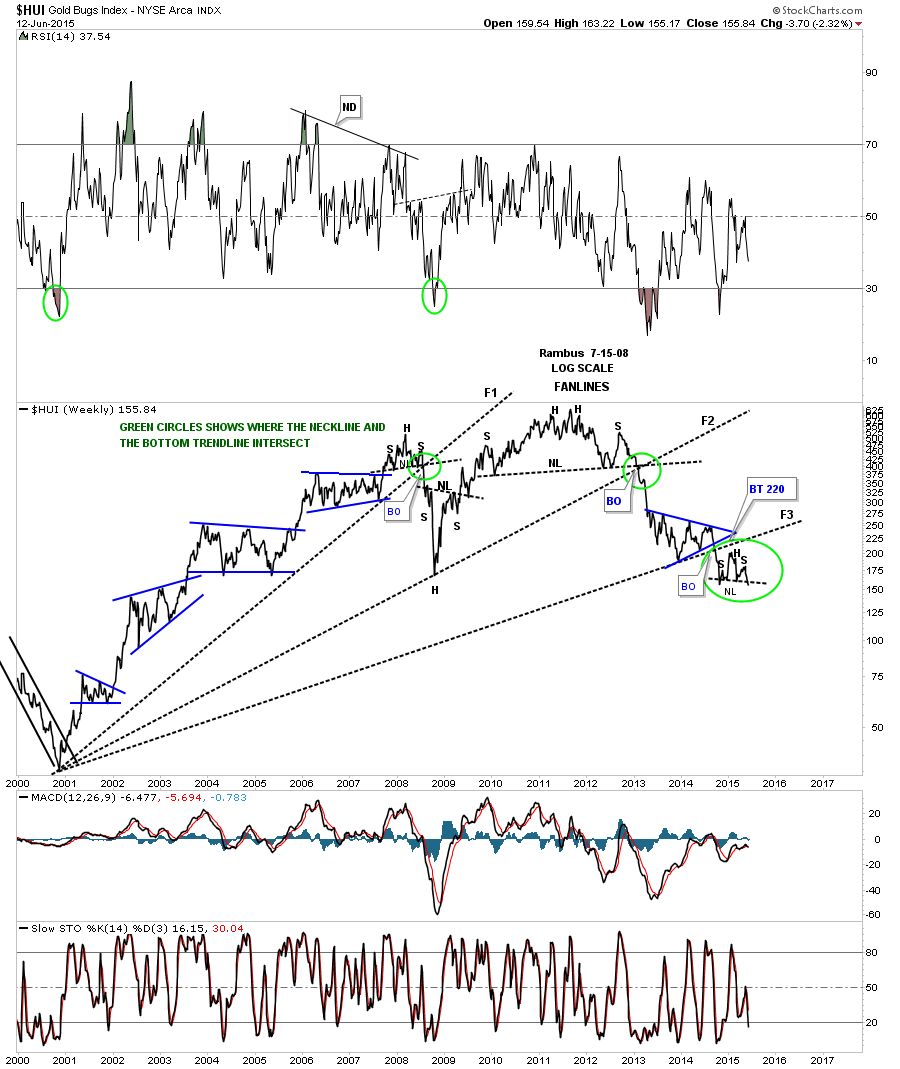 hui fanline line chart green cirsle