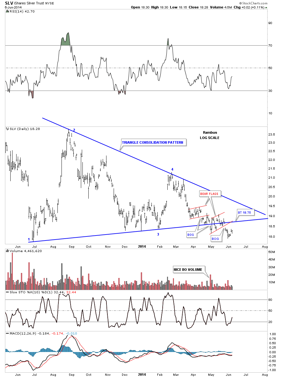 slv day new triangle