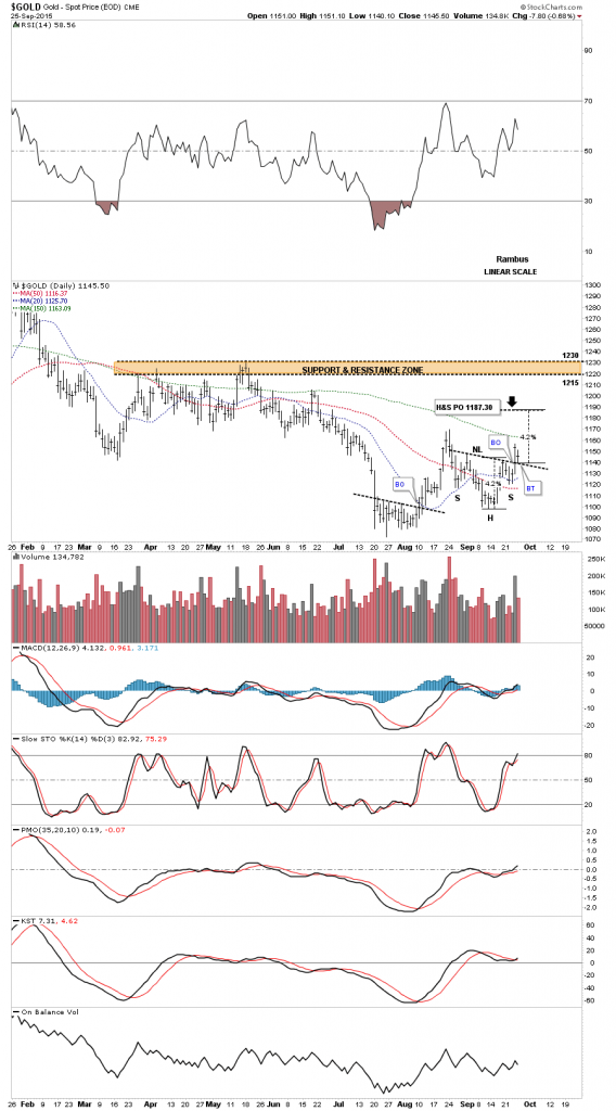 gold new h&s conso